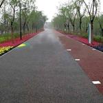 彩色透水地坪是高新技术产品