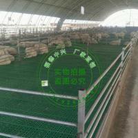羊圈地板  羊粪板   羊场用羊床