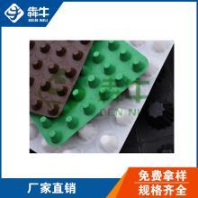 广东省2cm厚绿色塑料排水板防水滤水板