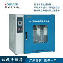 101系列电热鼓风干燥箱/实验室烘箱
