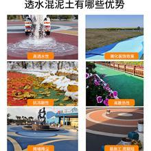 高承载生态透水地坪在江苏植物园绿色停车场改造中的应用