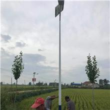 专业生产 8米40W集成太阳能发电路灯 超亮太阳能路灯定做