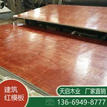 广州建筑模板批发 建筑工地模板厂 工地建筑模板公司