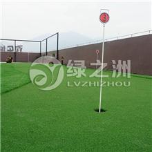供应16mm展厅地毯,优质塑料草坪,室内外活动场地人造草皮