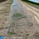 镀锌格宾网河道治理防护形式