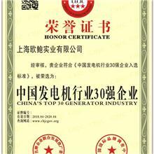 中国发电机行业30强企业