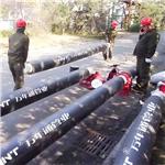 宁夏PE-RT II型管 温泉管道[PE-RT II]厂家