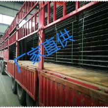 广东厂家专业生产免拆模钢筋桁架楼承板、可拆卸钢筋桁架楼承板