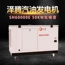 50kw泽腾电力品牌 应急电源 型号SH60000E