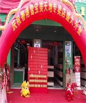 荣耀开业元旦共庆,香港雪宝东莞横沥专卖店闪亮登场