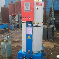 供应燃气采暖锅炉 小型燃气供暖洗浴锅炉