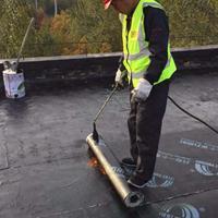 屋面防水 屋面防水材料 屋面堵漏材料 屋面渗漏水维修 屋面维修
