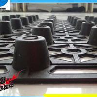 厂家低价供应蓄排水板18953418377