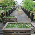非木塑-新一代PS仿木户外板材  环保 耐候防水防潮-花箱