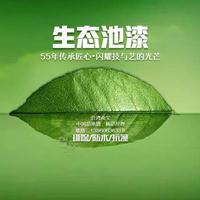 水池漆,台湾南宝