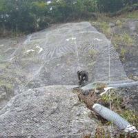 护坡钢丝网 山体防护网 山坡防护网