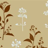 海南艺术漆招商加盟 新型墙艺涂料 艺术涂料品牌