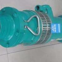 厂家供应BQW隔爆潜水排污电泵