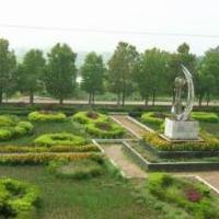 深圳环保绿化工程 深圳园林绿化工程 深圳公园绿化工程