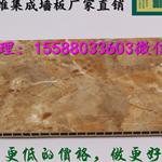邵通市哪买竹木纤维集成墙板快装墙板