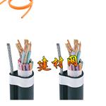 电动葫芦手柄控制电缆,葫芦吊电缆