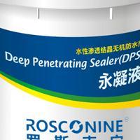 桥梁防水防腐防护剂-DPS永凝液