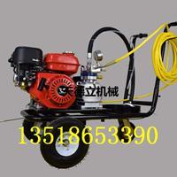 汽油单枪冷喷划线机 道路专用冷涂料喷涂机1213