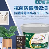 臣工净柚漆P1工程系列净美抗菌陶瓷漆内墙漆双组份釉面漆功能涂料