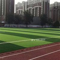 吉林双色足球场草坪_人工草皮_可提供安装施工_免费设计