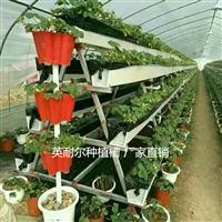 温室瓜果蔬菜种植槽 大棚草莓立体种植槽 番茄无土栽培槽