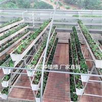 温室新型草莓种植槽 PVC草莓立体种植槽 番茄基质槽