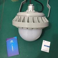海洋王NFC9186、NFC9186-L100价格、NFC9186-L80厂家