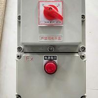防爆开关箱BLK52-25A断路器