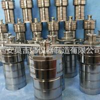 水热合成反应釜25ml/50ml/100ml/200ml
