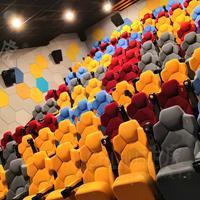 佛山赤虎品牌批量供应高端影视厅影院椅