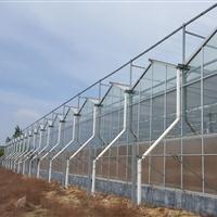 江苏南京玻璃温室大棚的生产厂家