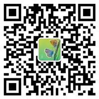 河北洮河橡塑制品有限公司