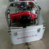 润林LSJ-05便携高压消防水泵 高压接力水泵 森林灭火水泵