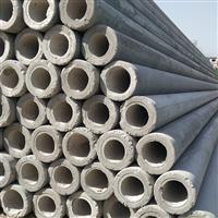 供应上海宝山12米水泥电线杆 混凝土电杆