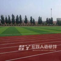 鹤岗人工草皮7人制足球场使用_人造草坪参数_厂家网站