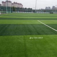 东北双色足球场草坪_人工草皮_可提供安装施工_免费设计